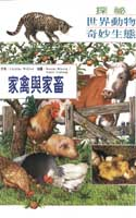 家禽與家畜