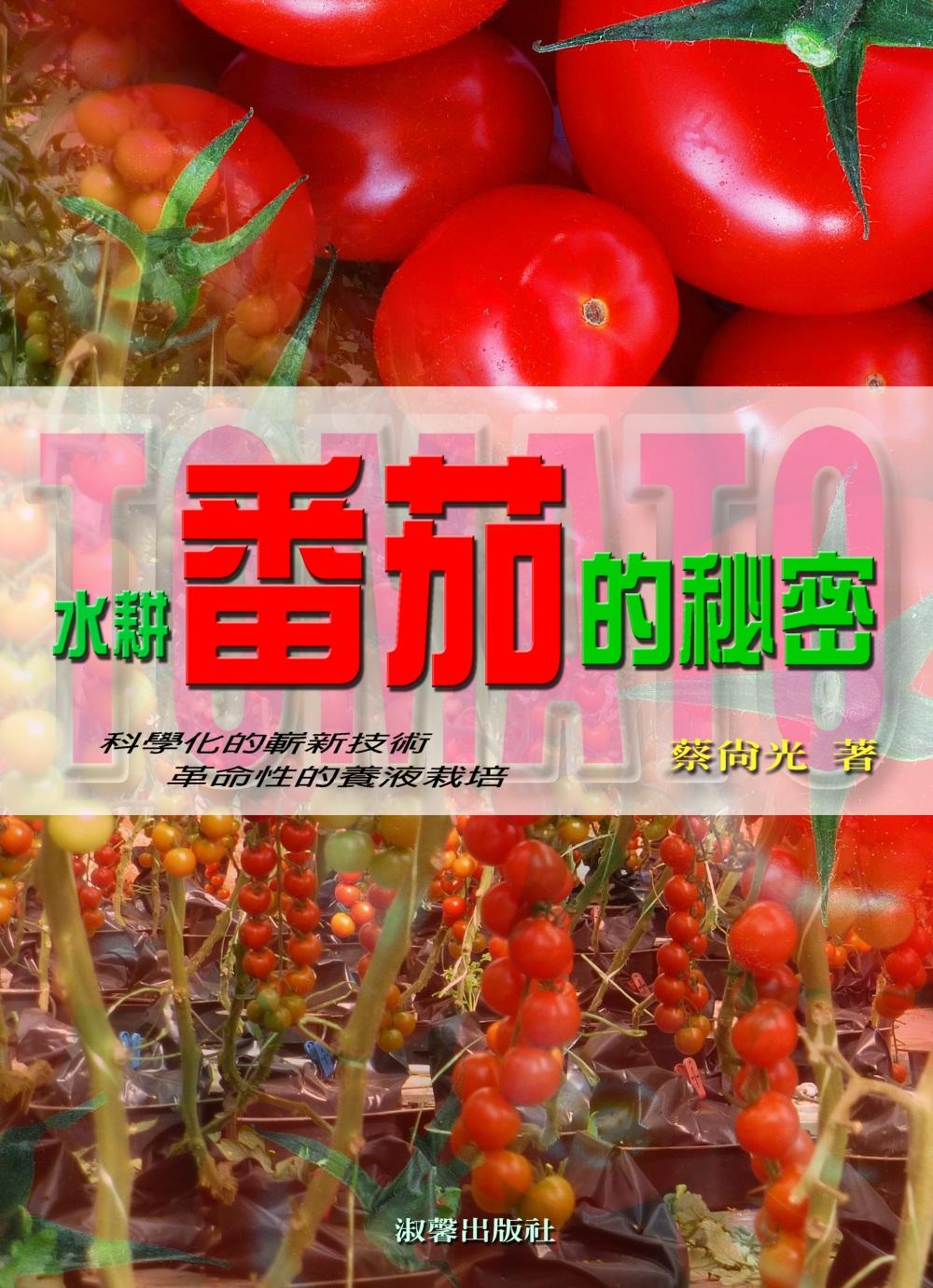水耕番茄的秘密