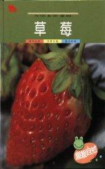 親親自然月刊-草莓
