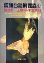 認識台灣的昆蟲,鱗翅目-王蛾科.木蠹蛾科
