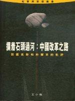 摸著石頭過河:中國改革之路:對薩克斯和科爾奈的批評