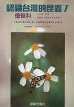認識台灣的昆蟲,燈蛾科