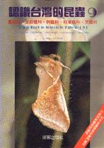 認識台灣的昆蟲,蠶蛾科.波紋蛾科.刺蛾科.枯葉蛾科.天蛾科
