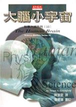 大腦小宇宙 /