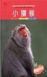 親親自然月刊-小獼猴