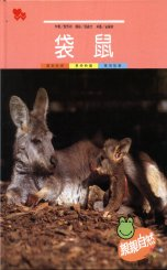 親親自然月刊-袋鼠