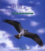 魚鷹之戀:魚鷹的生活史