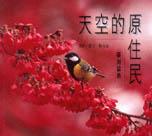 天空的原住民 : 臺灣留鳥