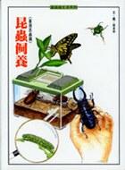 昆蟲飼養 : 臺灣昆蟲篇