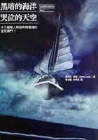 黑暗的海洋.哭泣的天空:十六艘單人帆船與南極海的生死搏鬥!