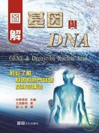 圖解基因與DNA