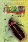 台灣螢火蟲家族:黑夜的提燈者