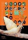 蝸牛不思議:21個不可思議的主題&100種臺灣蝸牛圖鑑