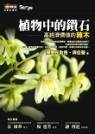 植物中的鑽石:高經濟價值的辣木