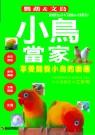 小鳥當家:鸚鵡&文鳥:享受飼養小鳥的樂趣