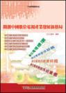 開創中國數位電視產業發展新格局