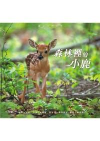 森林裡的小鹿 :  鏡頭下的奇想 /