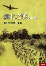 緬北之戰 /