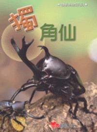 獨角仙 (評分 : 14分)