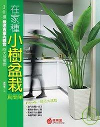 在家種小樹盆栽真簡單:30種最適合室內觀賞的大型植物