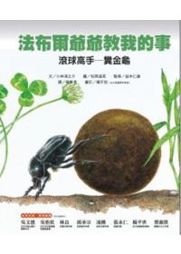 滾球高手-糞金龜