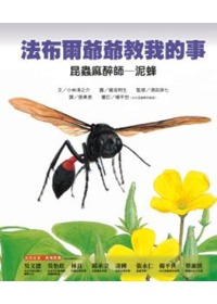 昆蟲麻醉師-泥蜂