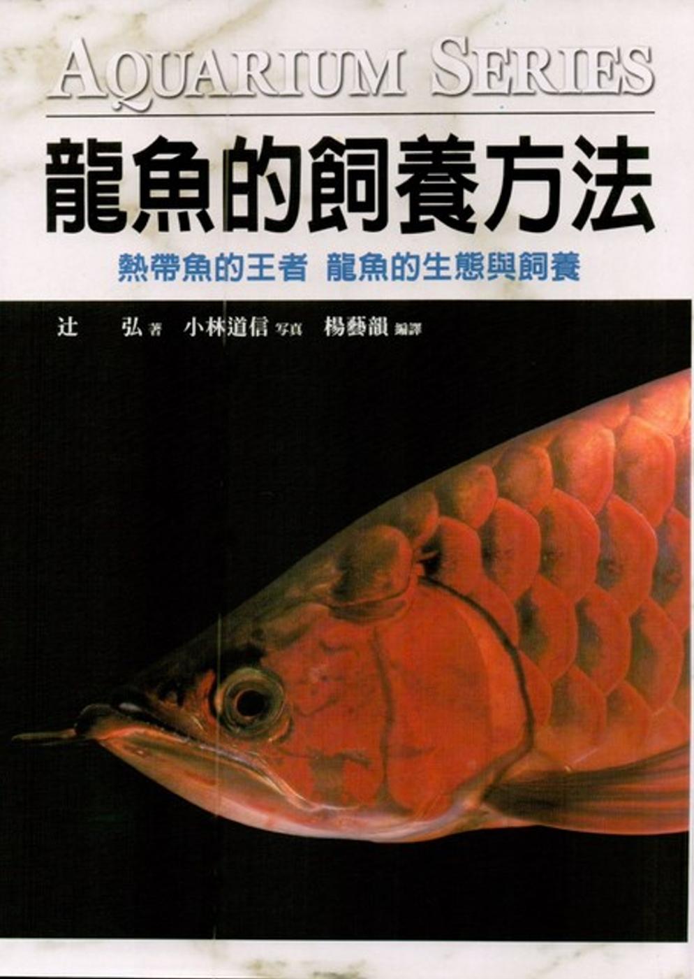 龍魚的飼養方法