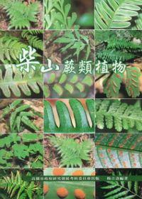柴山蕨類植物