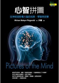 心智拼圖:從神經造影看大腦的成長.學習與改變