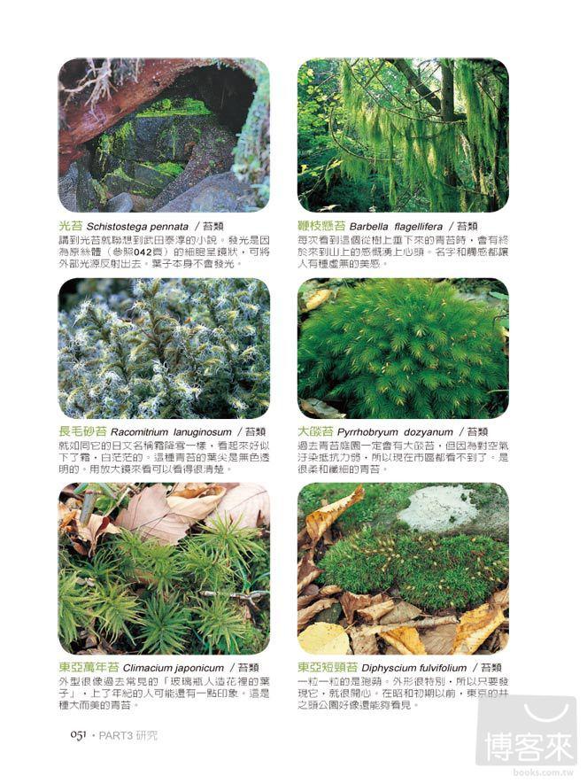 ►GO►最新優惠► [暢銷書]洋溢幸福的青苔小世界:賞苔、種苔,享受涼綠時光