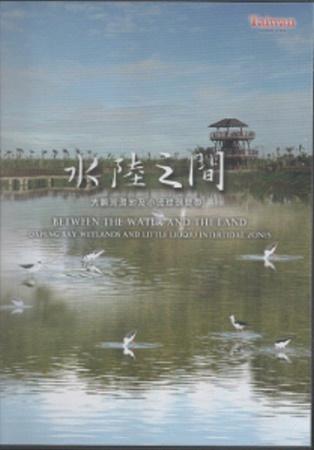水陸之間:大鵬灣濕地及小琉球潮間帶