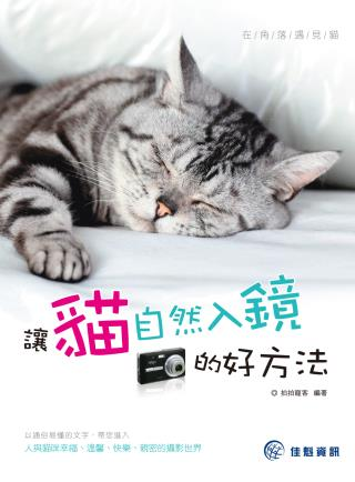 在角落遇見貓:讓貓自然入鏡的好方法