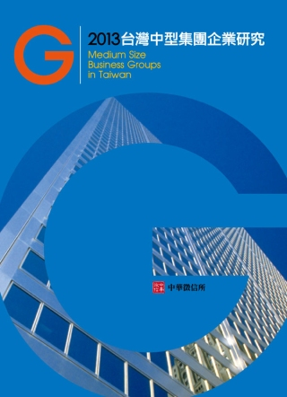 2013年台灣中型集團企業研究(附贈網路資料庫使用帳號)