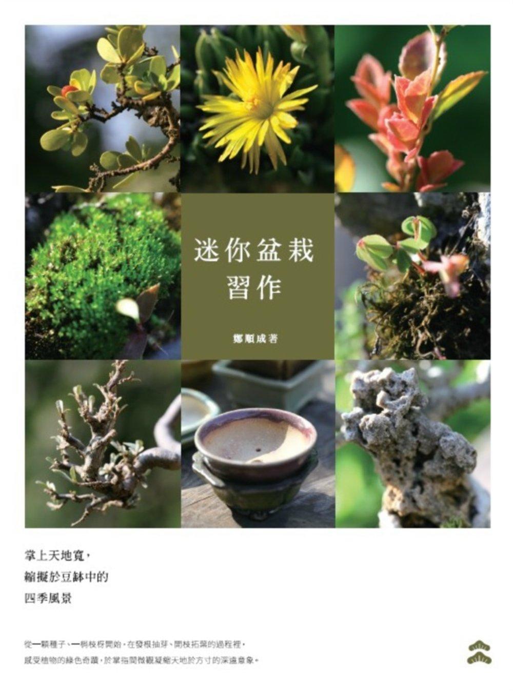 迷你盆栽習作:掌上天地寬,縮擬於豆缽中的四季風景
