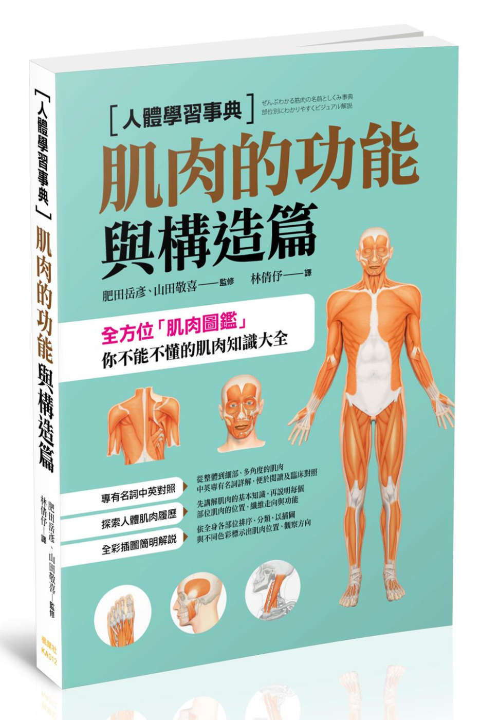 人體學習事典:肌肉的功能與構造篇