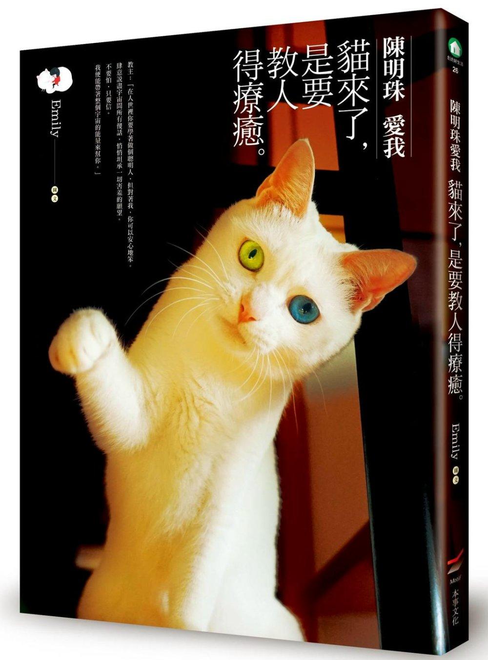 陳明珠愛我:貓來了,是要教人得療癒