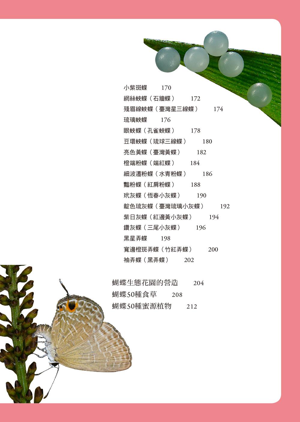 ◤博客來BOOKS◢ 暢銷書榜《推薦》蝴蝶飼養與觀察