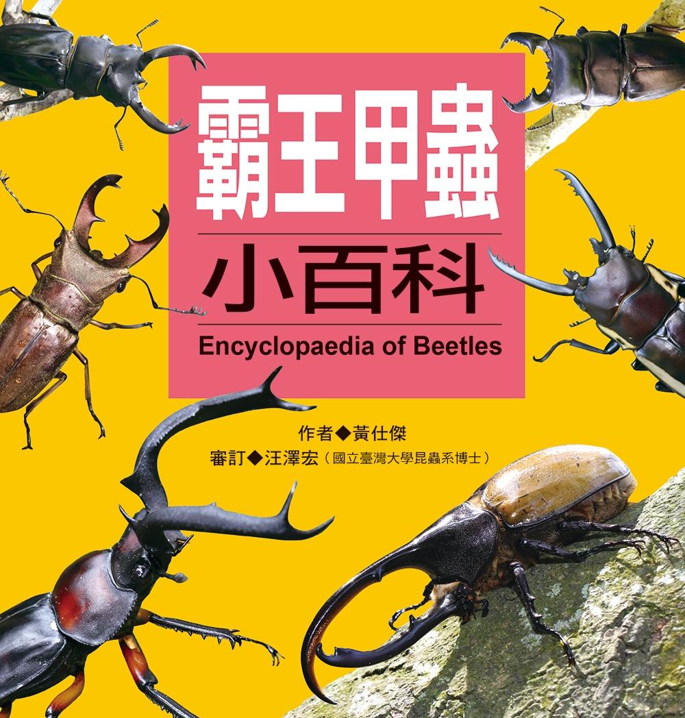 兒童百科:霸王甲蟲小百科 更