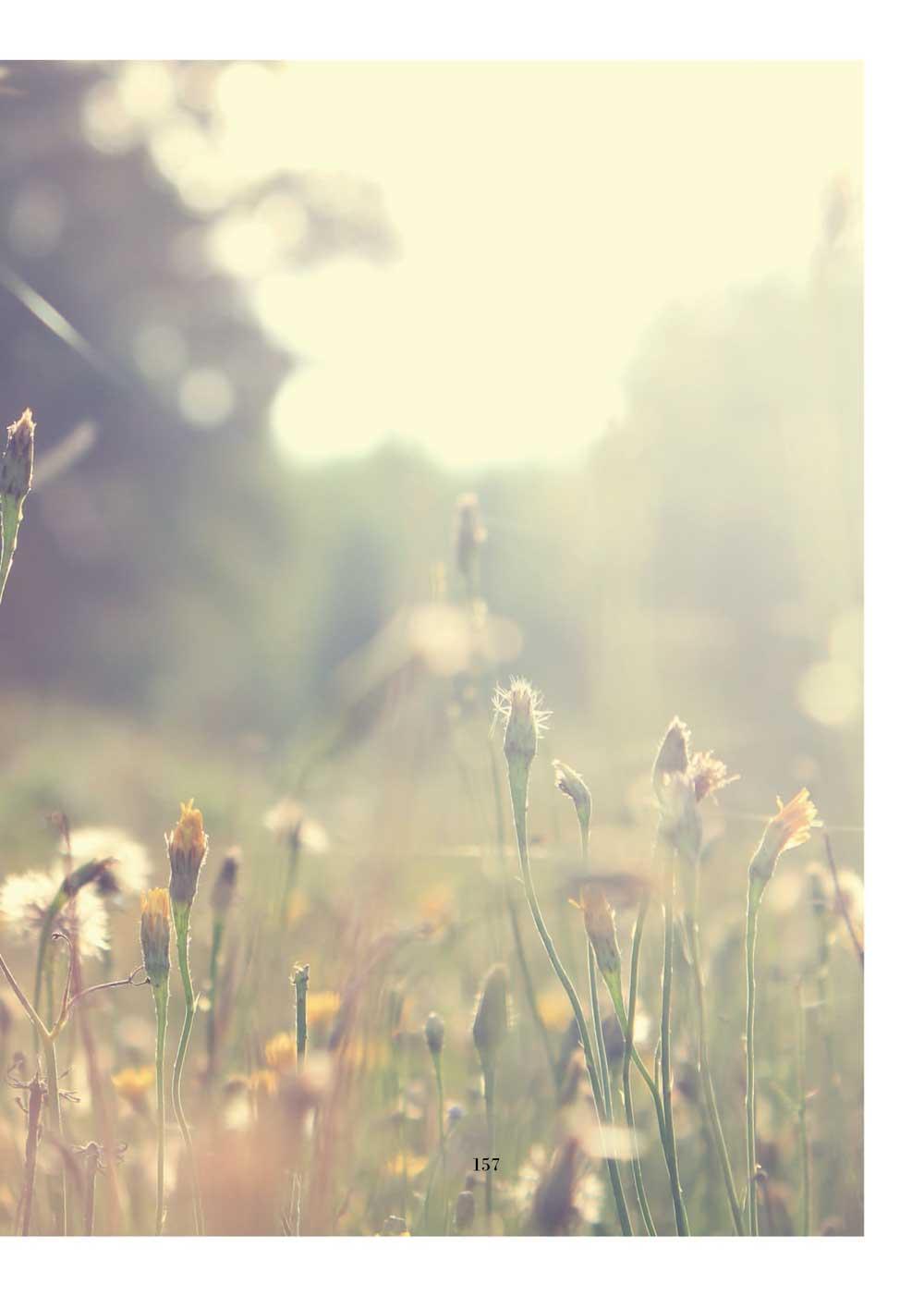 ◤博客來BOOKS◢ 暢銷書榜《推薦》今天書寫幸福:阿德勒的99個幸福與正向訊息