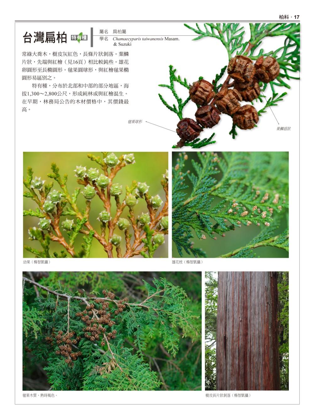 //im2.book.com.tw/image/getImage?i=http://www.books.com.tw/img/001/074/50/0010745089_b_11.jpg&v=5957227d&w=655&h=609