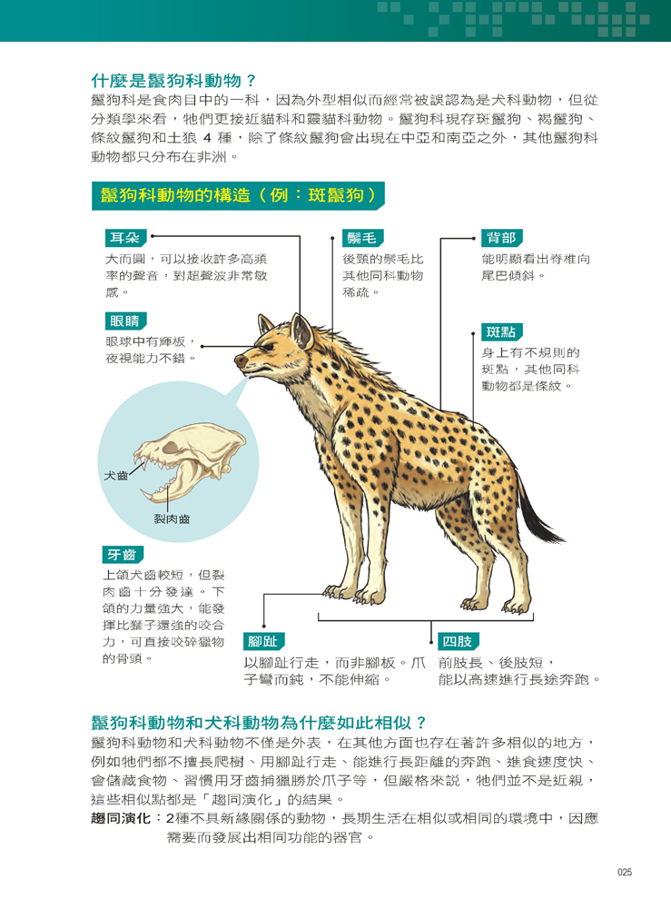 ◤博客來BOOKS◢ 暢銷書榜《推薦》X萬獸探險隊:(8) 最強獵手 灰狼VS鬣狗(附學習單)