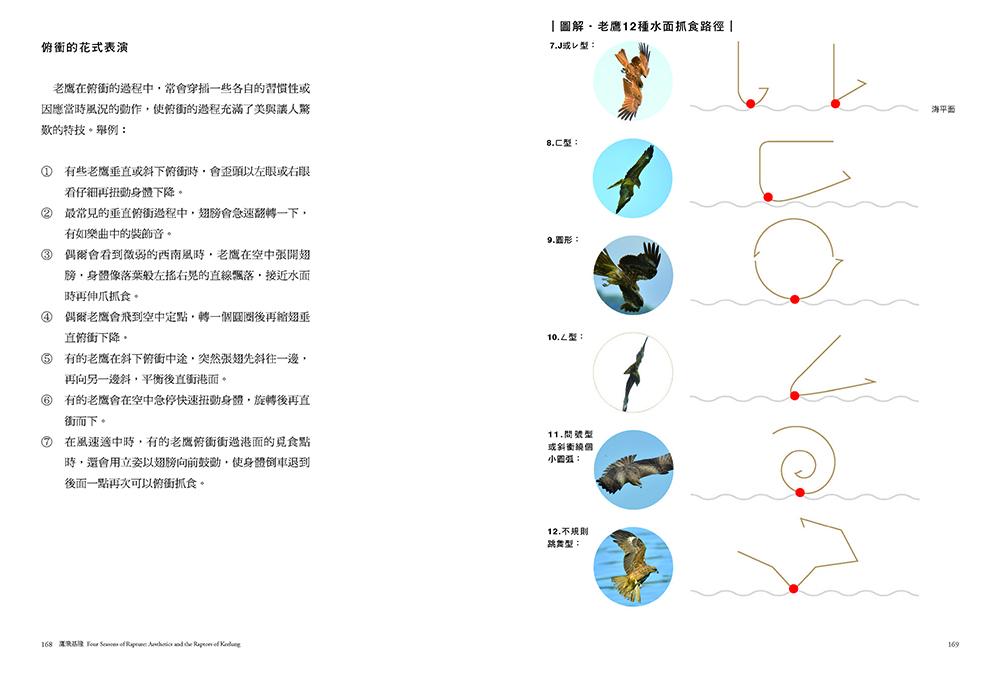 ◤博客來BOOKS◢ 暢銷書榜《推薦》鷹飛基隆:台灣最美的四季賞鷹秘境