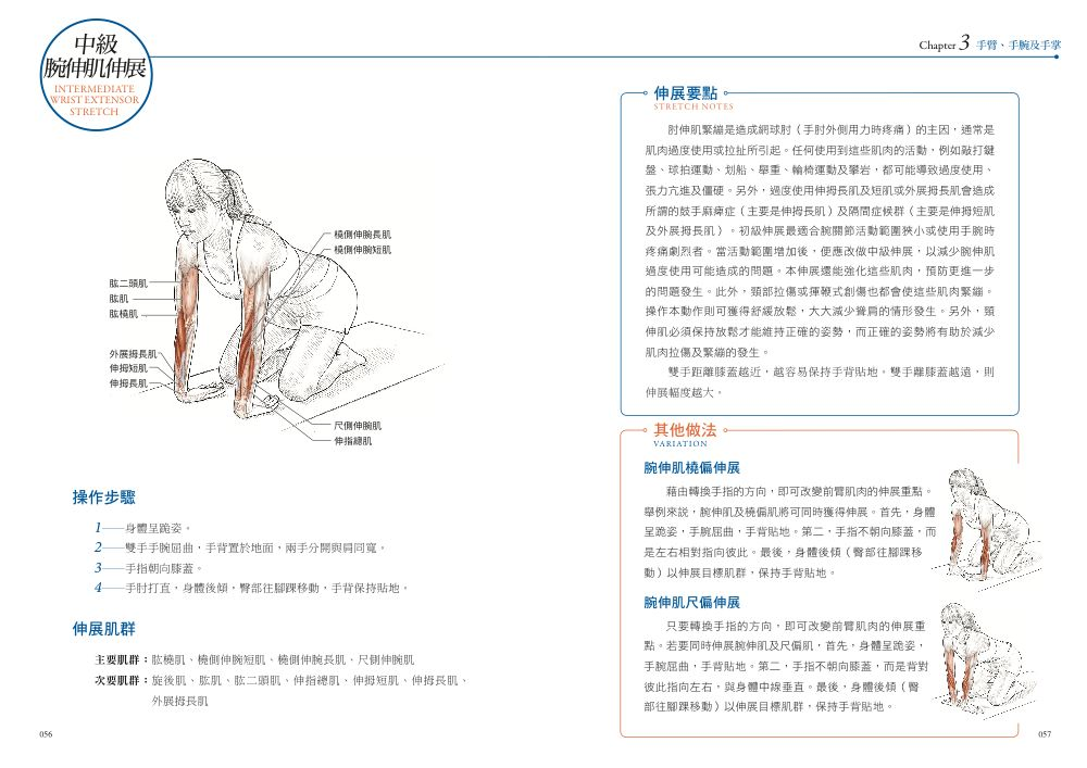 ◤博客來BOOKS◢ 暢銷書榜《推薦》伸展運動解剖書