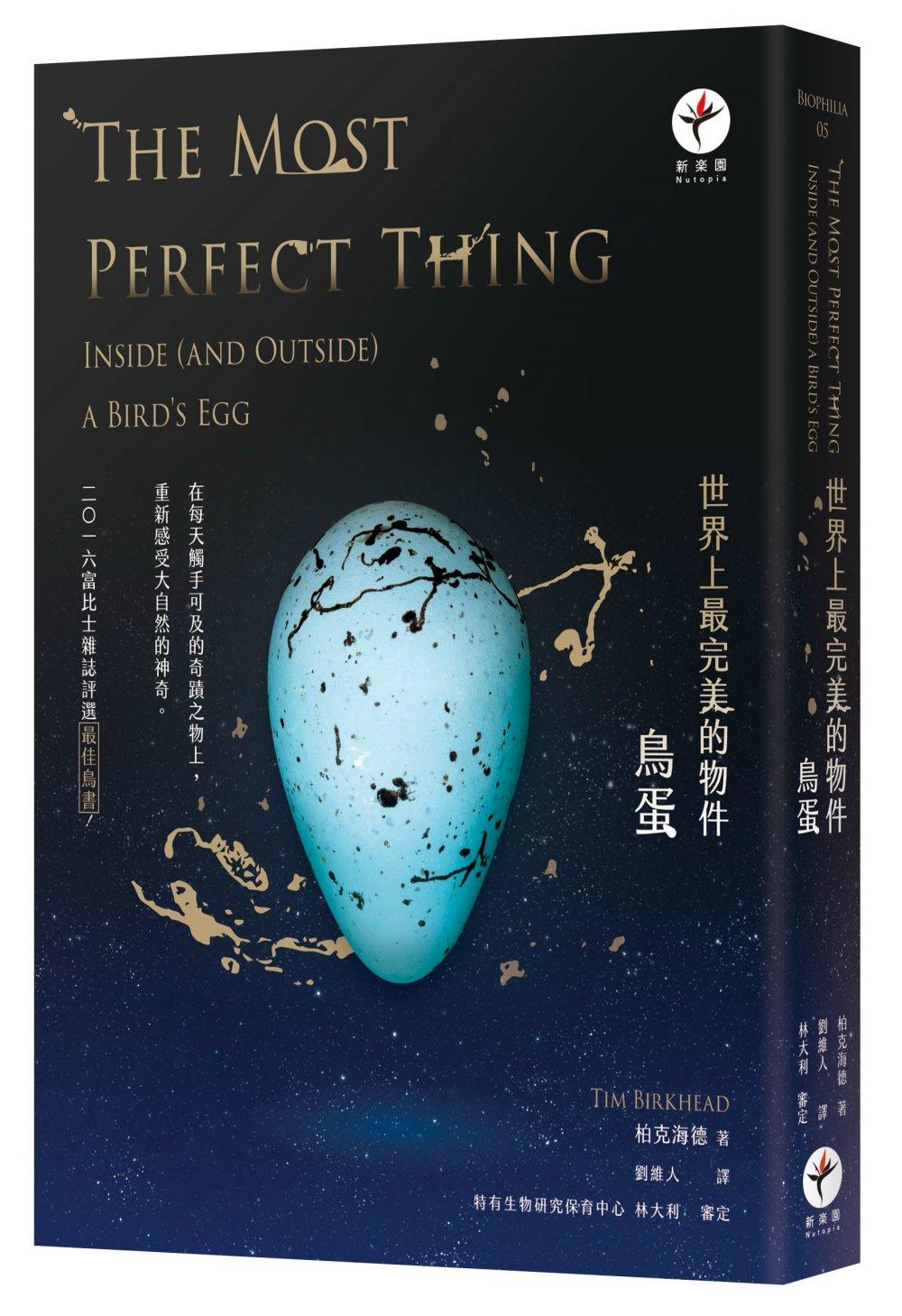 世界上最完美的物件:鳥蛋