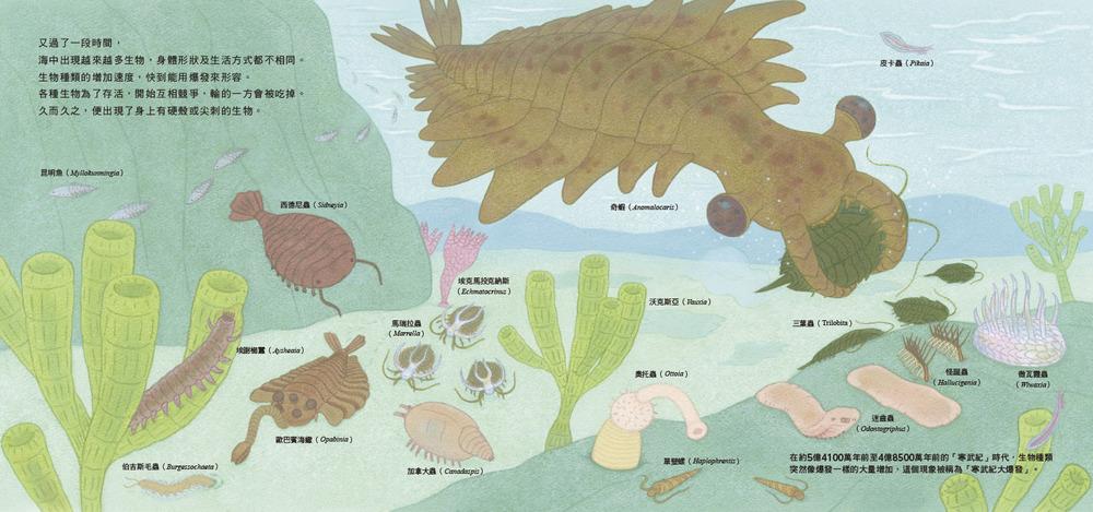 ◤博客來BOOKS◢ 暢銷書榜《推薦》骨之旅:從海洋到陸地,看見人類與萬物的演化關係