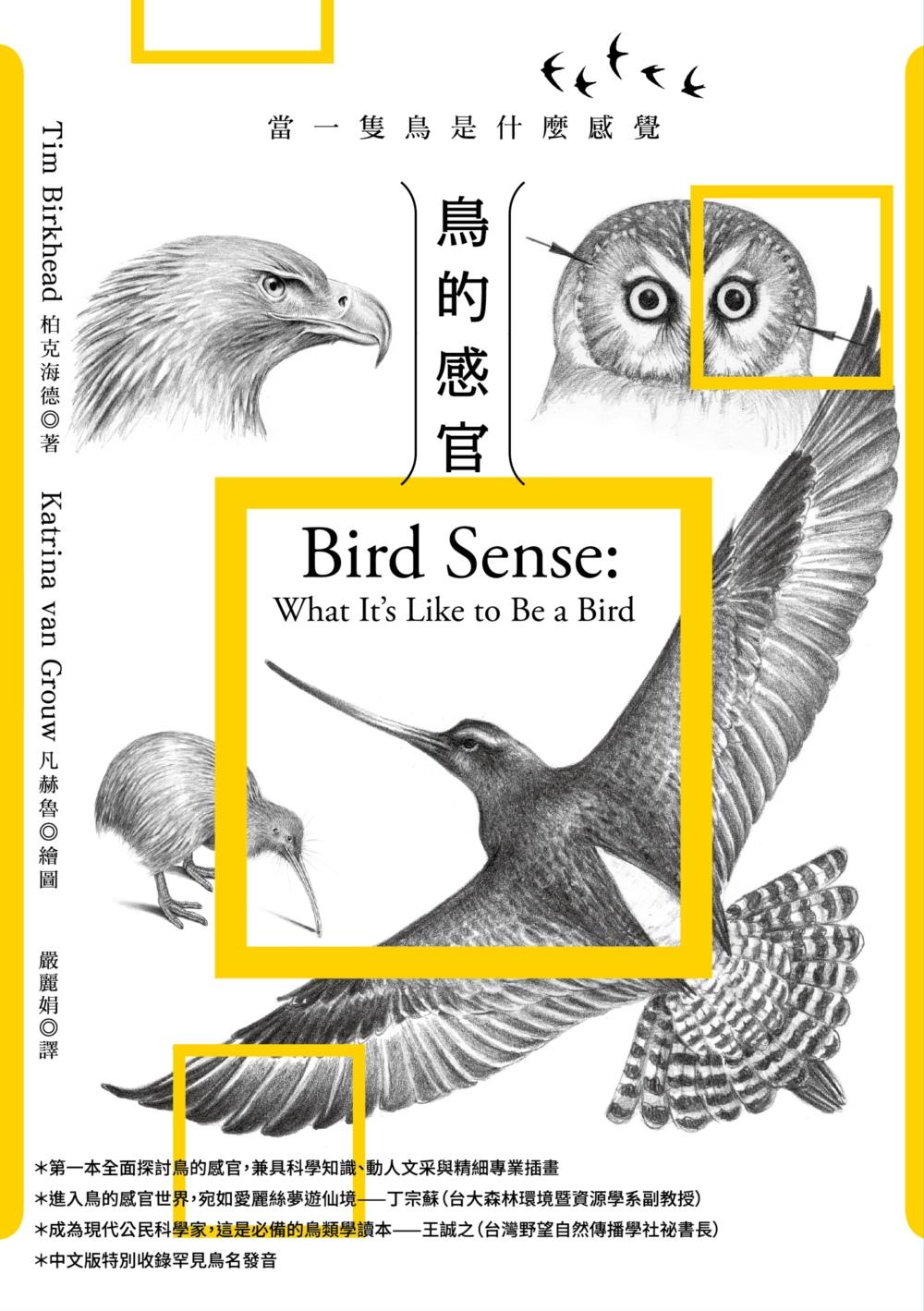 ◤博客來BOOKS◢ 暢銷書榜《推薦》鳥的感官:當一隻鳥是什麼感覺?(全新增修版)