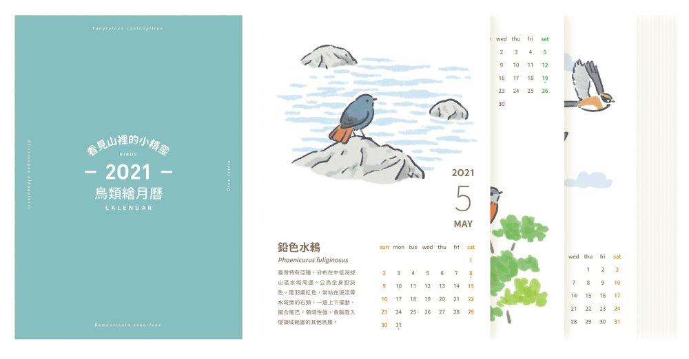 看見山裡的小精靈—2021年鳥...