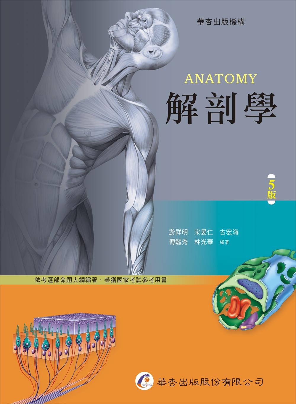 解剖學(5版)