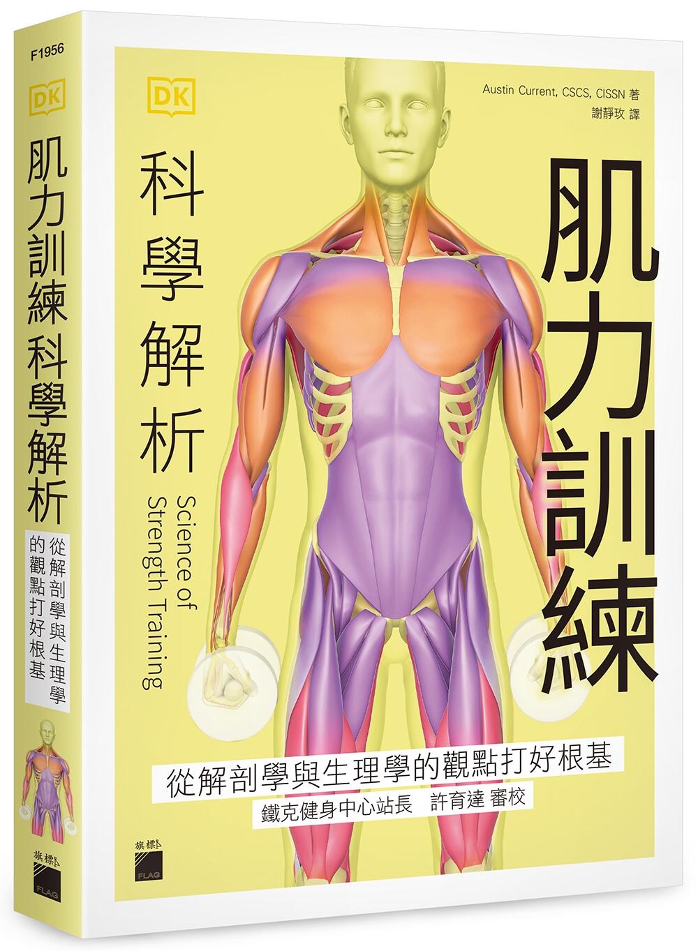 肌力訓練科學解析:從解剖學與生...