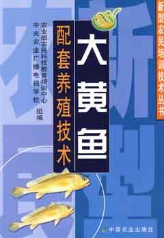 大黃魚配套養殖技術